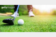 """6세 여아, 아빠가 친 골프공에 맞아 사망…""""비극적 사고"""""""