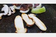 [석창인 박사의 오늘 뭐 먹지?]솔향 가득 가을 송이, 아삭아삭 식감도 그만