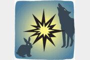 토끼와 늑대, 누가 더 평화적일까[서광원의 자연과 삶]〈10〉