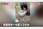 버섯 캐러 갔는데…땅속에서 생매장된 아기 발견한 노인들