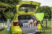 현대차, 반려 동물 동행 '베뉴' 시승 참가자 모집