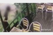 '경의선 고양이 살해' 남성에 이례적 실형 선고…징역 6개월