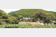 [김화성 전문기자의 &joy]'보배로운 섬' 진도를 어슬렁거리다
