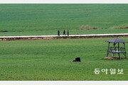 [김화성 전문기자의 &joy]고창 청보리밭을 거닐다