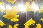 [갤럭시 S5로 찍는 포토에세이]프린터로 만든 노란 새들