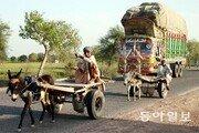 [이훈구 기자의 히말라야 2400㎞]<8>파키스탄 시골길… 과거와 현재가 나란히