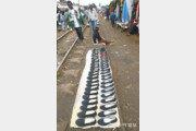 [홍진환 기자의 케냐에서 희망찾기]<2>철로 위 신발가게