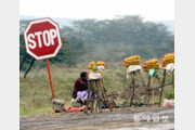 [홍진환 기자의 케냐에서 희망찾기]<3>손님은 언제… 간절한 기다림