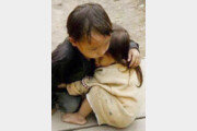 '네팔 돕기' SNS에 베트남 남매 사진