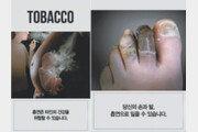 [담배, 아직 못 끊으셨나요]흡연 경고그림 공포유발 수위는 어느 정도?