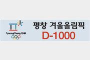 썰매경기장 공사 25%… 지구촌 겨울잔치 '준비 착착'