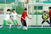 스포츠 동호인팀, 리그의 재구성