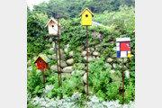 [오경아의 정원의 속삭임]나비를 부르는 정원