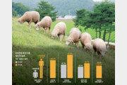 3년간 농촌일자리 4000개 창출… 판로확대가 우선 과제