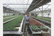 음양오행 이론 적용, 사상체질을 바탕으로  꽃 재배하는 농부