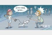 [챈들러의 한국 블로그]한국 강아지와 인종차별