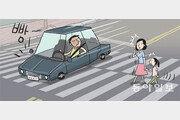 [림펜스의 한국 블로그]보행자 보고도 달리는 자동차, 후진적 풍경이다