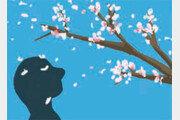 [종이비행기]달콤 쌉쌀한 봄