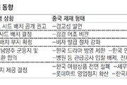롯데마트 中 99개 점포중 87개 휴업… 현대기아차는 3, 4월 판매량 반토막