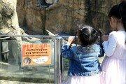 쉿, 동물원 동물들은 '어린이날'이 더욱 무섭답니다