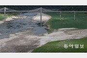 강원 강수량 44년만에 최저… 바닥 드러낸 소양강