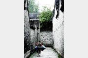 [책의 향기]높은 담 쌓고 사는 중국인, 목청도 커졌네