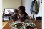 [히로미의 고양이 일기] <10> 고양이와 치유 2