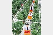 [청년드림]연암대, 스마트 농축산 교육 산실로
