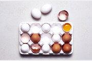 [데이터 비키니] 어릴 때 흰 달걀 먹었으면, 당신은 아재?