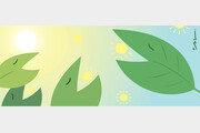 [김재호의 과학 에세이]광합성 증대와 식물윤리