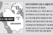 서울 44배 규모 사막신도시…사우디 왕세자의 '개혁 야심'