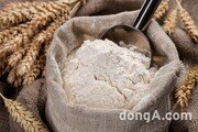 방부제와 표백제의 누명을 쓴 밀가루
