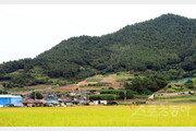 """[고흥, 이야기가 있는 마을] """"용과 까치가 다시 비상하길"""" 왜란의 상처가 남긴 恨"""