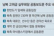 한반도기 공동입장… 女아이스하키 단일팀