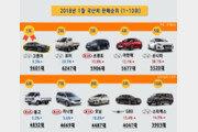 2018년 1월 국산차 판매순위… 현대기아차 '기선제압'