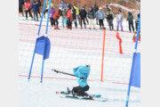 세계 첫 로봇 스키 금메달은 '태권브이'