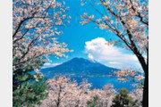 [여행, 나를 찾아서]동쪽엔 미야자키-서쪽엔 가고시마… 사계절 내내 아름다운 그곳, 日 남규슈