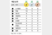 [평창올림픽]메달 순위