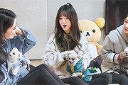 3주 만에 어엿한 세 강아지 엄마된 '개밥 아이돌'