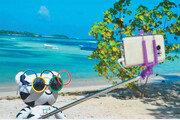 '휴가 즐기는 수호랑' IOC 공식 트위터 장식