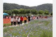 '한국관광 100대 명소' 태화강, 국가정원으로 지정되나