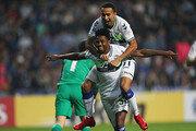 K리그 외인선수 국적 분포…브라질리언 52% 최다, 호주 6명·크로아 5명