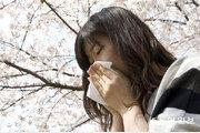꽃가루 흩날리는 4월, 알레르기 주의보