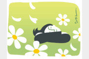 [날씨 이야기]5월 날씨는 봄처녀 마음을 홀린다