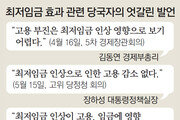 """김동연 """"최저임금, 고용에 영향"""""""
