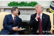 문재인 대통령 북미 중재 외교 신중론 부상
