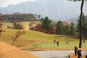 콘도-렌터카 등 이용 '멀티 골프 회원권'