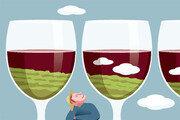 [포도나무 아래서]<4>와인 한 잔은 나무, 바람, 햇빛을 느끼는 것