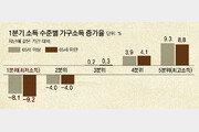 """""""소득감소, 노인 증가 때문""""이라더니… 65세미만 수입 더 줄었다"""