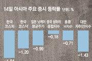 신흥국 머니무브 확산땐 한국도 '도미노 쇼크' 우려